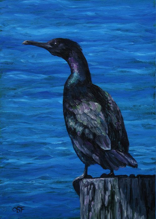 Bird Greeting Card featuring the painting Pelagic Cormorant by Crista Forest