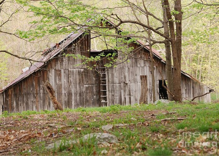 Pendleton County Greeting Card featuring the photograph Pendleton County Barn by Randy Bodkins