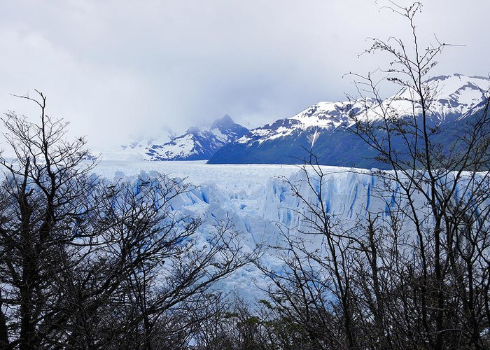 Argentina Greeting Card featuring the photograph Perito Moreno Glacial Landscape by Michele Burgess