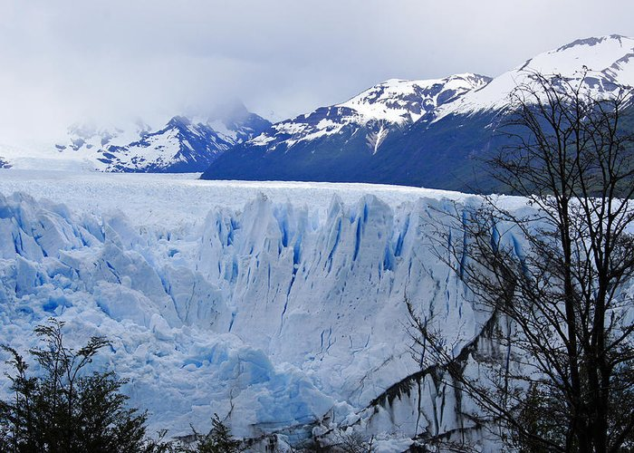 Argentina Greeting Card featuring the photograph Perito Moreno Glacier by Michele Burgess