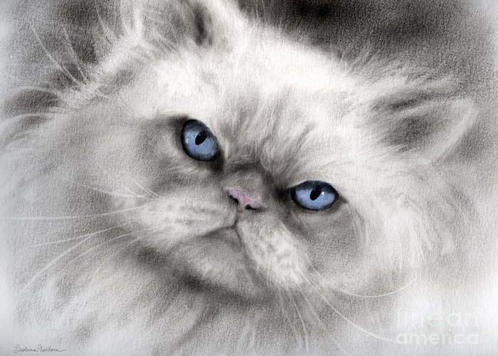 Persian Cat Greeting Card featuring the painting Persian Cat With Blue Eyes by Svetlana Novikova