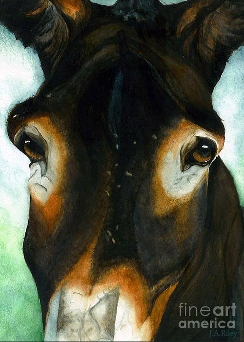 Mule Greeting Card featuring the painting Pete The Mule by Janine Riley
