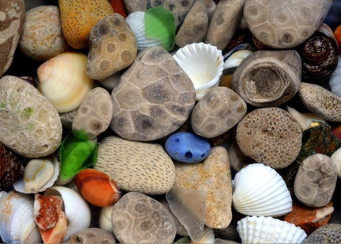 Stone Greeting Card featuring the photograph Petoskey Stones Lll by Michelle Calkins