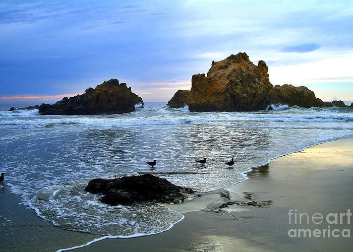 Twilight Greeting Card featuring the photograph Pfeiffer Beach Big Sur Twilight by Charlene Mitchell