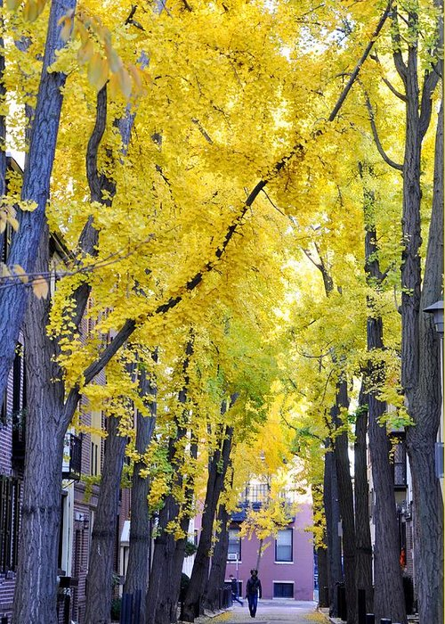 Rittenhouse Square Greeting Cards