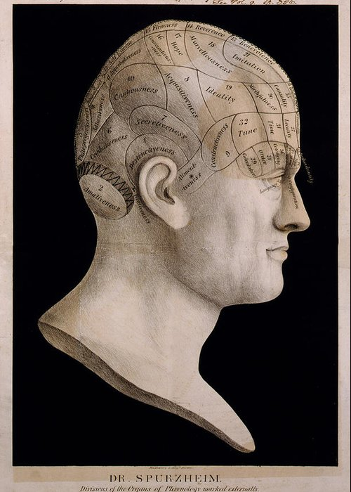 Abstract Greeting Card featuring the digital art Phrenology by Georgia Fowler