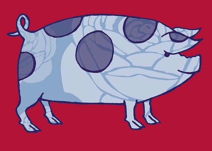 Spotted Pigs Greeting Cards