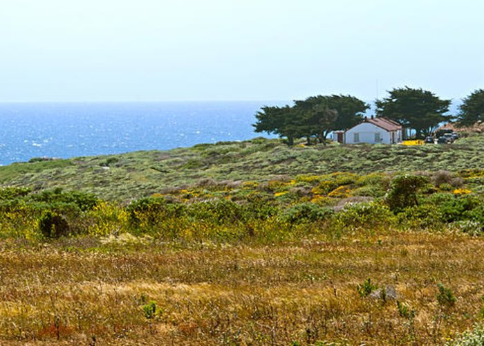 Piedras Blancas Lighthouse Greeting Card featuring the photograph Piedras Blancas Lighthouse Near San Simeon And Cambria Along Hwy 1 In California by Artist and Photographer Laura Wrede
