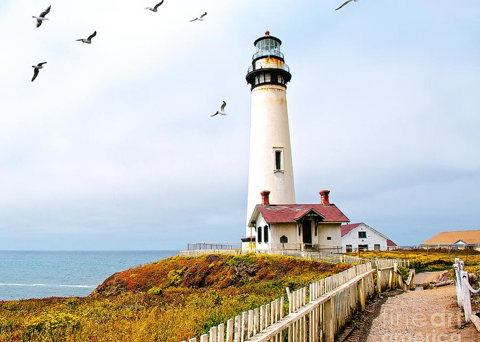 Pigeon Point Lighthouse Greeting Card featuring the photograph Pigeon Point Lighthouse by Artist and Photographer Laura Wrede