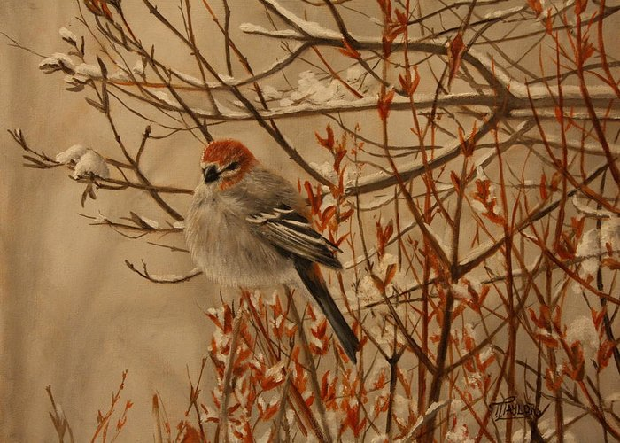 Bird Greeting Card featuring the painting Pine Grosbeak by Tammy Taylor