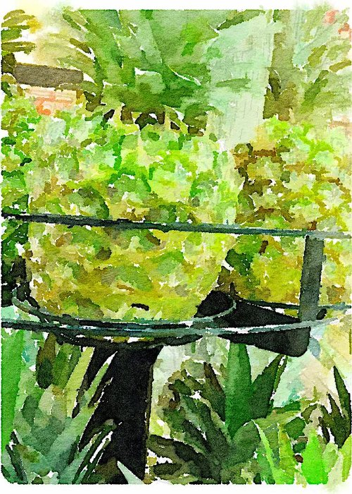 Waterlogue Greeting Card featuring the digital art Pineapple Green by Shannon Grissom