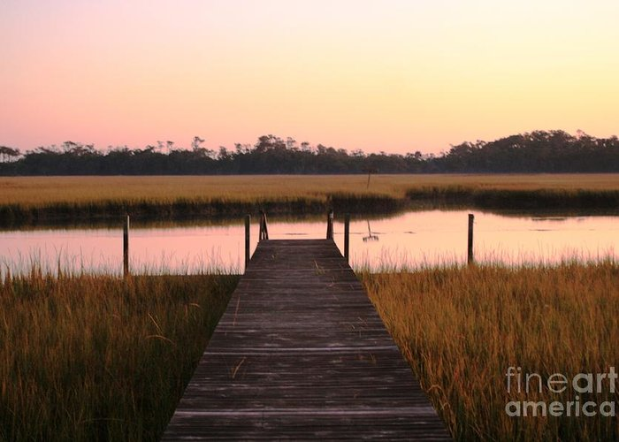 Pink Greeting Card featuring the photograph Pink And Orange Morning On The Marsh by Nadine Rippelmeyer