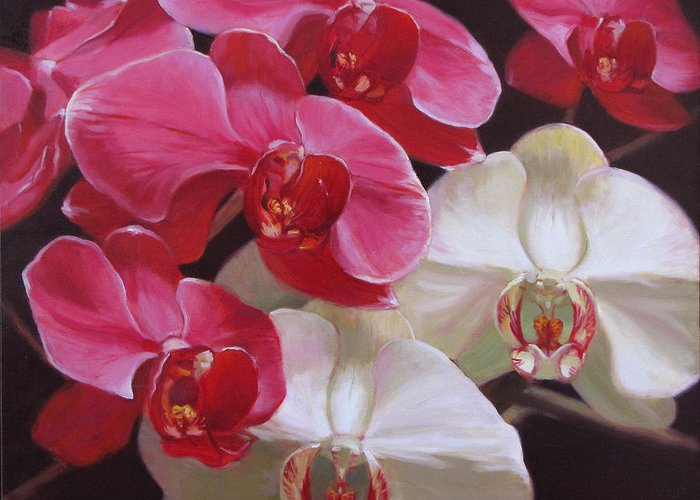 Floral Greeting Card featuring the painting Pink And White Orchids by Takayuki Harada
