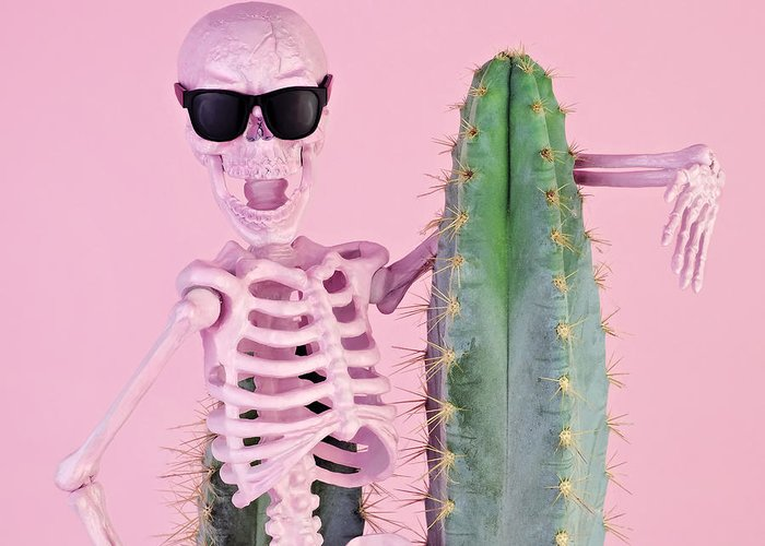 Cool Attitude Greeting Card featuring the photograph Pink Skeleton With Cactus by Juj Winn
