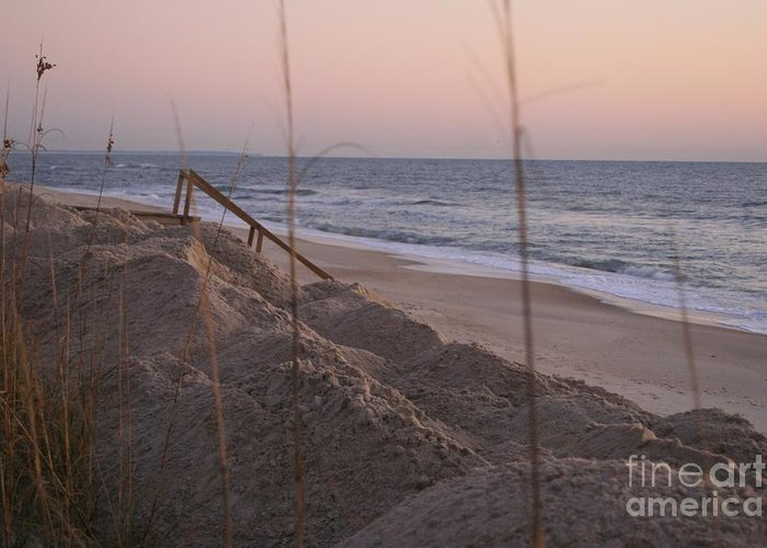 Pink Greeting Card featuring the photograph Pink Sunrise On The Beach by Nadine Rippelmeyer