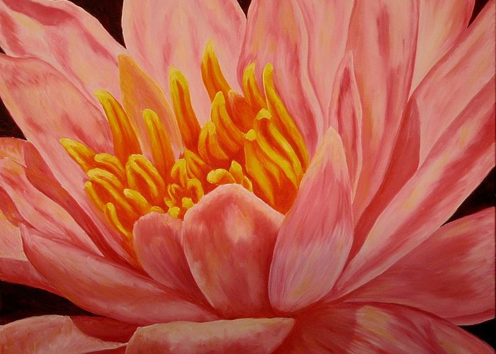 Oil Greeting Card featuring the painting Pink Waterlily by Darla Brock
