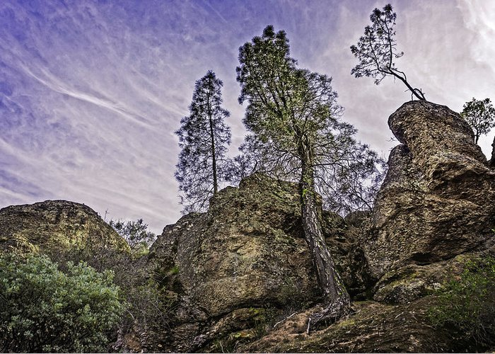 Pinnacles National Monument Greeting Card featuring the photograph Pinnacles And Trees by Bill Boehm