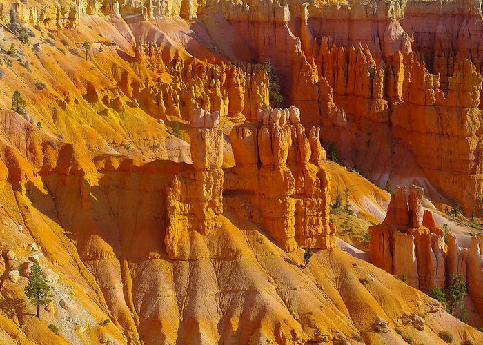 Rocks Greeting Card featuring the photograph Pinnicles At Sunset Point Bryce Canyon National Park by Jeff Swan
