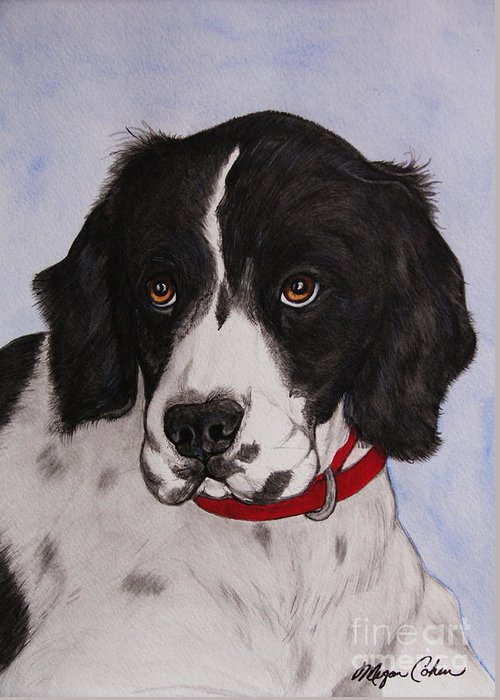 Dog Greeting Card featuring the painting Pippy The Springer Spaniel by Megan Cohen