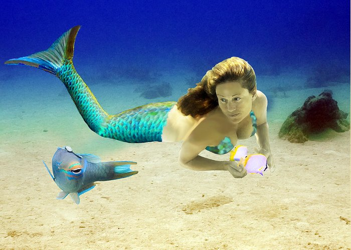 Mermaid Greeting Card featuring the photograph Playmates by Paula Porterfield-Izzo