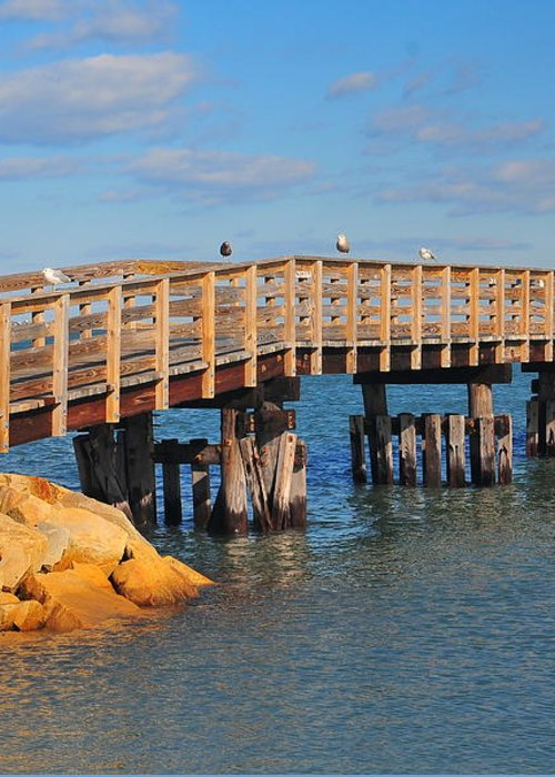 Plymouth Massachusetts Greeting Card featuring the photograph Plymouth Harbor Breakwater by Catherine Reusch Daley