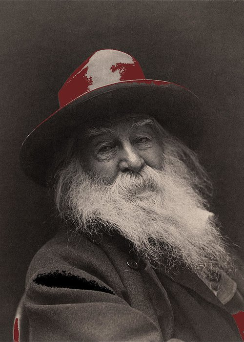 Poet Walt Whitman George Collins Cox Photo 1887 Greeting Card featuring the photograph Poet Walt Whitman George Collins Cox Photo 1887-2010 by David Lee Guss