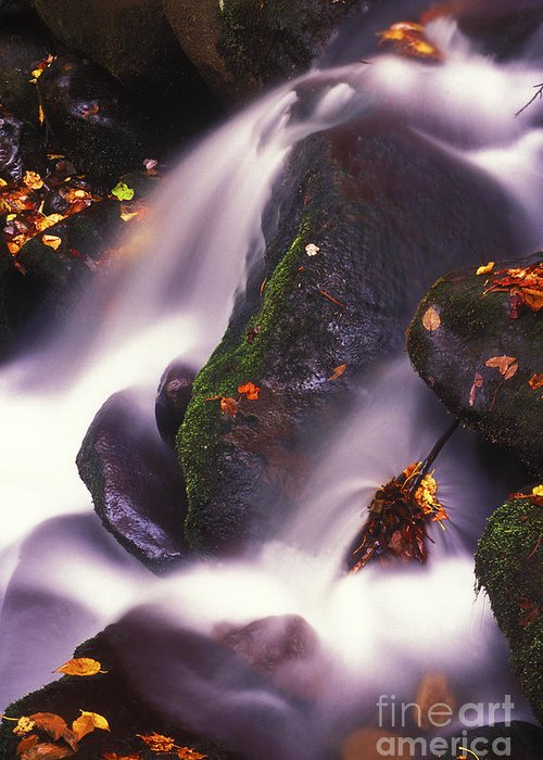 Water Greeting Card featuring the photograph Poetry In Motion - 290 by Paul W Faust - Impressions of Light