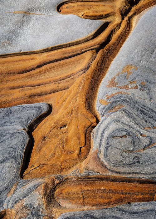 Copyrighted Greeting Card featuring the photograph Point Lobos Abstract 5 by Mike Penney