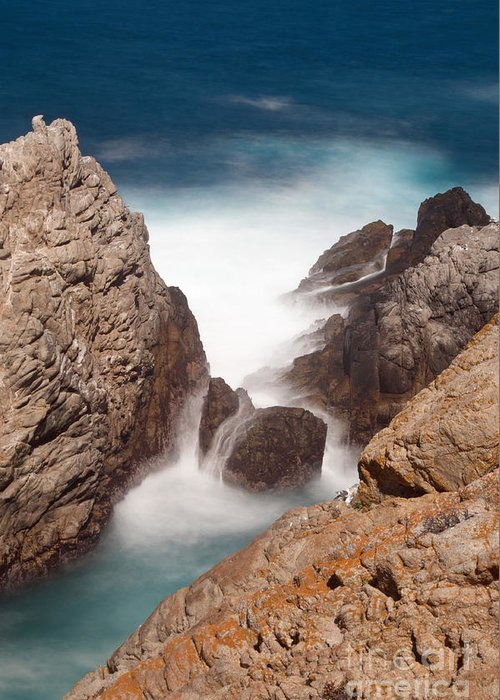 Point Lobos Greeting Card featuring the photograph Point Lobos Number Two by Catherine Lau