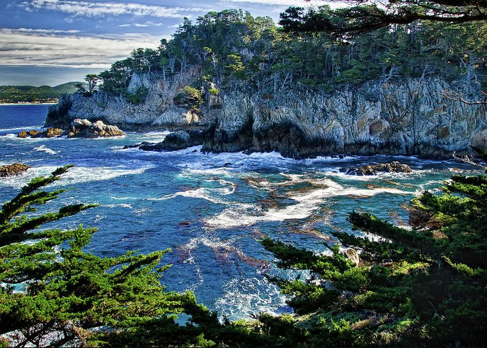 Point Lobos California Greeting Card featuring the photograph Point Lobos by Ron White