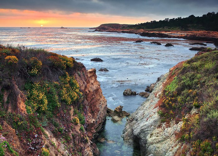 Sunset Greeting Card featuring the photograph Point Lobos State Reserve 3 by Emmanuel Panagiotakis