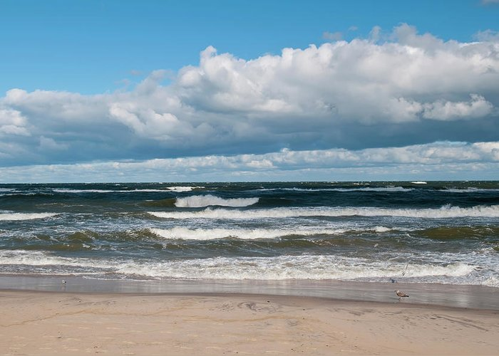 Water's Edge Greeting Card featuring the photograph Poland, View Of Baltic Sea In Autumn At by Westend61