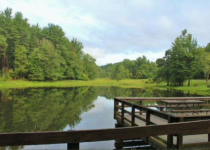 Pond Greeting Card featuring the photograph Pond In The Park by Laurie Tracy
