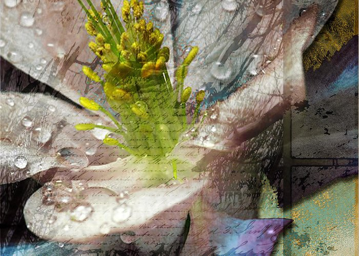 Greeting Card featuring the mixed media Pop IIi by Yanni Theodorou