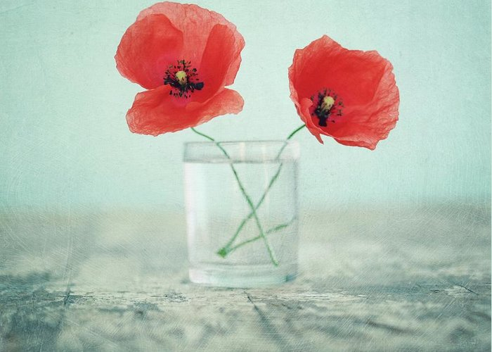 Bulgaria Greeting Card featuring the photograph Poppies In A Glass, Still Life by By Julie Mcinnes