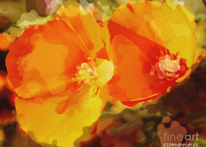 Abstract California Poppies Photographs Canvas Prints Canvas Greeting Card featuring the photograph Poppies On Fire by Artist and Photographer Laura Wrede