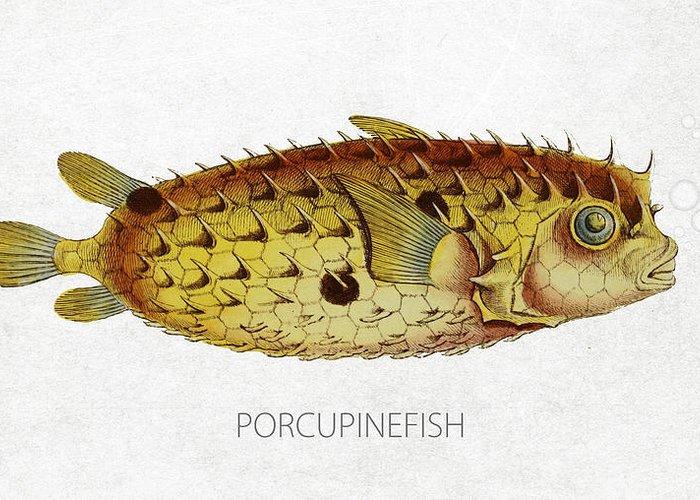 Porcupinefish Greeting Cards