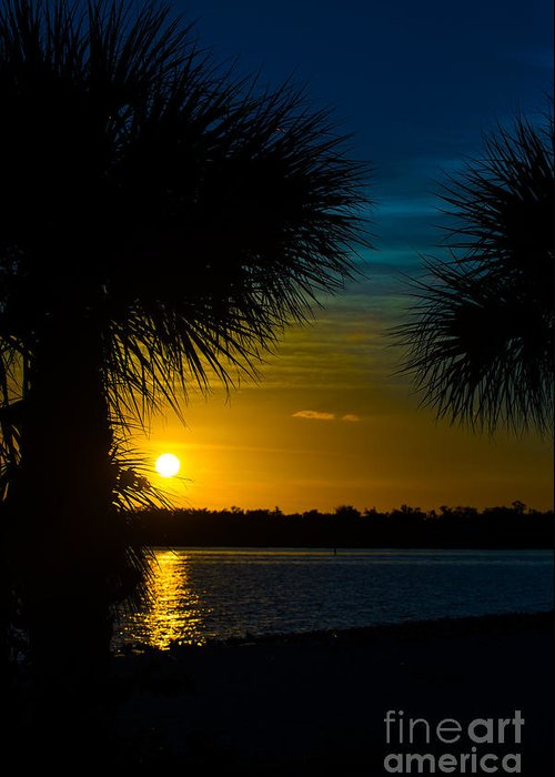 Port Charlotte Beach Greeting Card featuring the photograph Port Charlotte Beach Sunset In January by Anne Kitzman