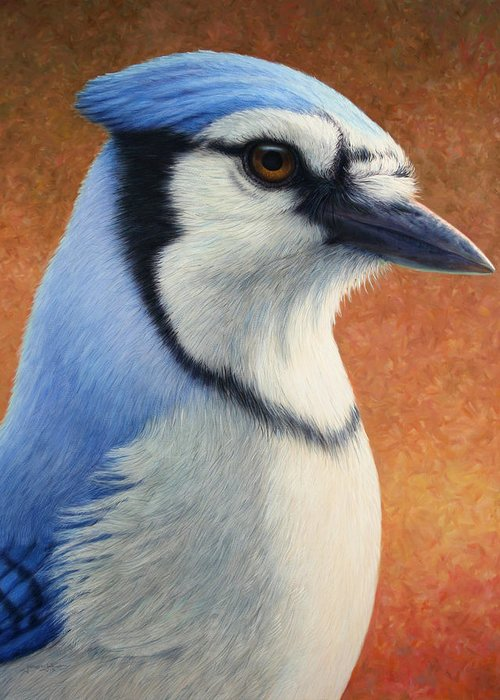 Bluejay Greeting Cards