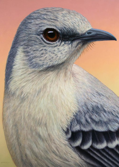 Mockingbird Greeting Card featuring the painting Portrait Of A Mockingbird by James W Johnson