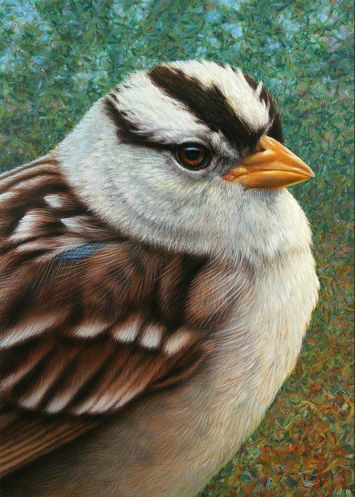Sparrow Greeting Card featuring the painting Portrait Of A Sparrow by James W Johnson