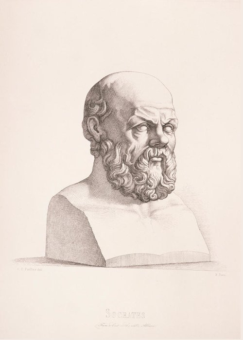 Male Greeting Card featuring the drawing Portrait Of Socrates by CC Perkins