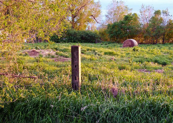 Spring Greeting Card featuring the photograph Post And Haybale by Tracy Salava