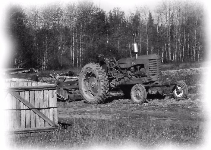 Potato Harvest Greeting Card featuring the photograph Potato Harvest 15 by Gene Cyr