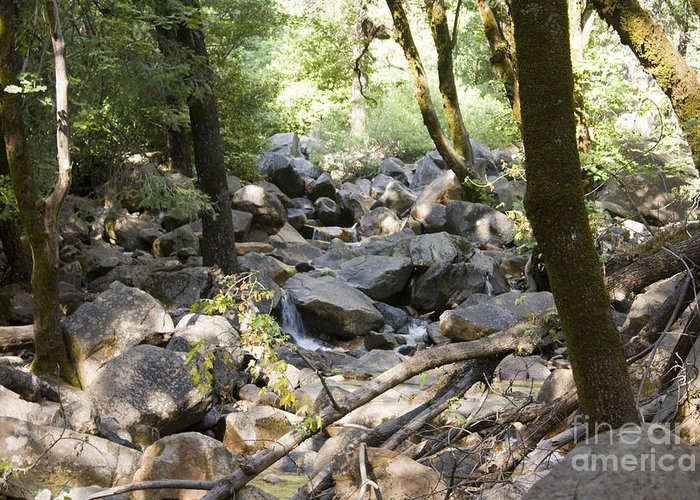 Landscape Greeting Card featuring the photograph pr 135 - A Very Dry Stream by Chris Berry