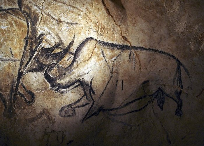 Animal Greeting Card featuring the photograph Prehistoric Cave Paintings, Chauvet by Science Photo Library