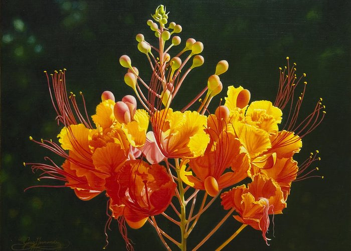 Floral Greeting Card featuring the painting Pride Of Barbados by Gary Hernandez