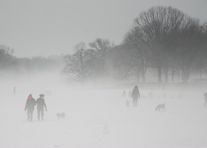 Prospect Park Greeting Card featuring the photograph Prospect Park Brooklyn In Winter by Julie VanDore
