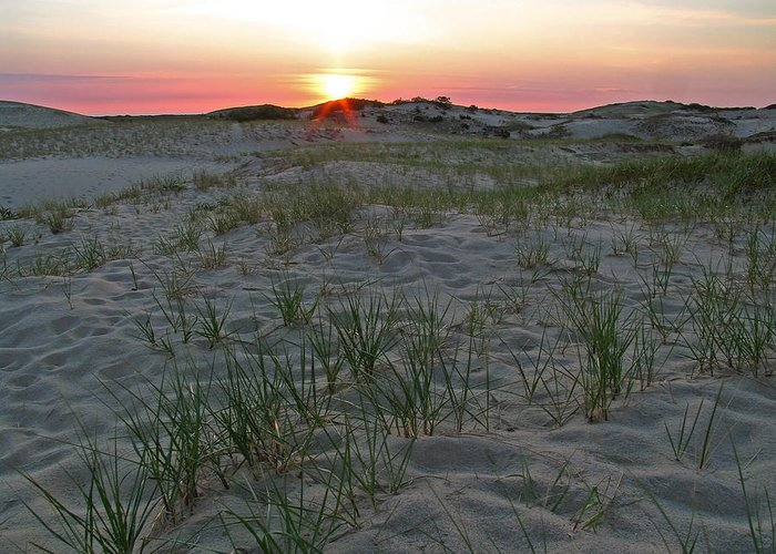 Landscape Greeting Card featuring the photograph Provinceland Dunes by Juergen Roth