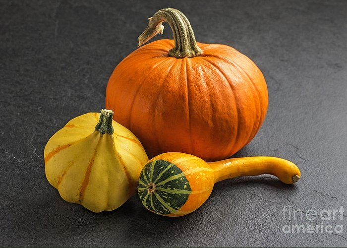 Pumpkin Greeting Card featuring the photograph Pumpkins On A Slate Plate by Palatia Photo